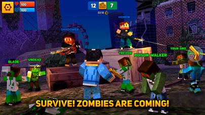 Screenshot of Block City Wars: Mafia Town3
