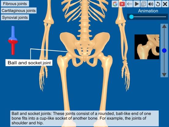 Joints: The Human Levers screenshot 9