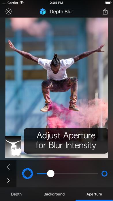 Depth Blur - Manual Portraitのおすすめ画像6