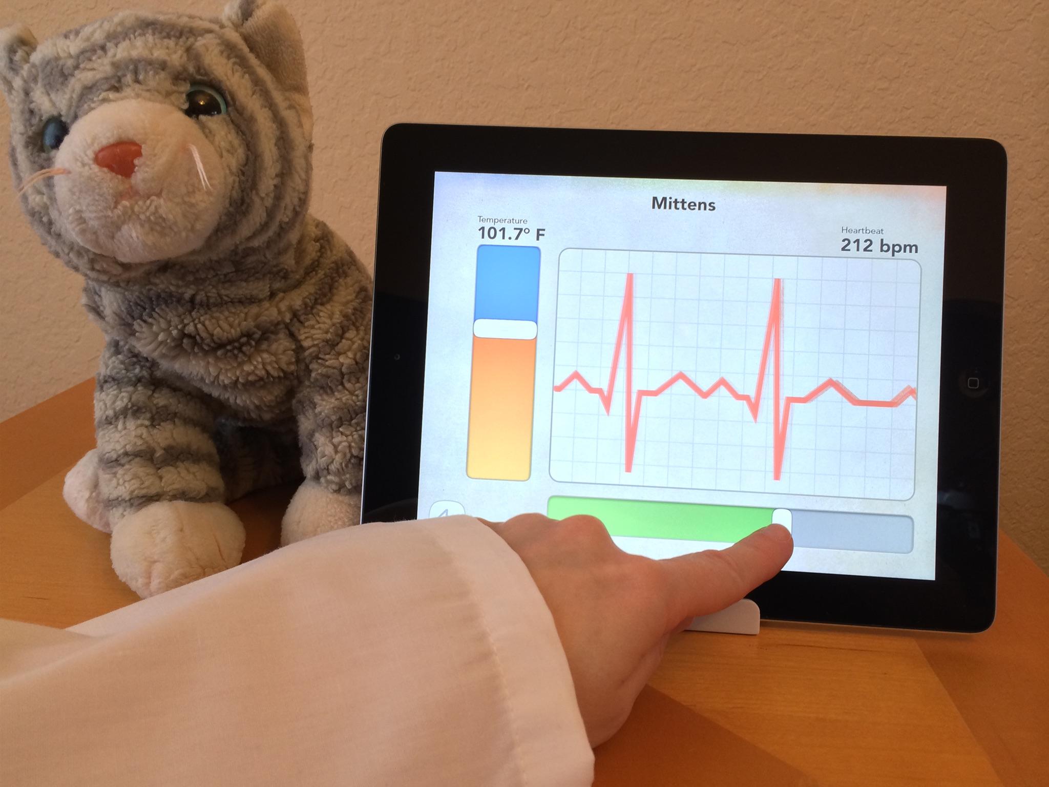 Screenshot do app Dr. PetPlay