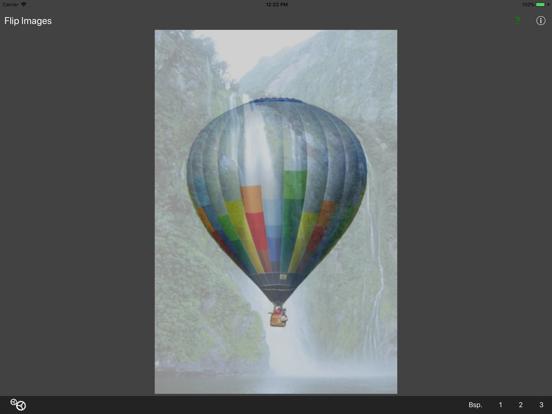 Flip Images screenshot 4