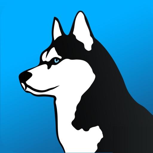Baixar Phone Guardian - VPN Segurança para iOS