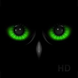 Night Eyes - Low Light Camera