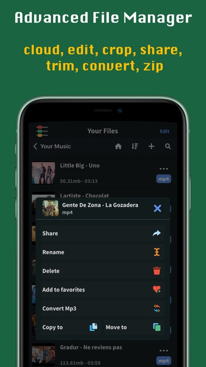FoxFM - Offline Video Player