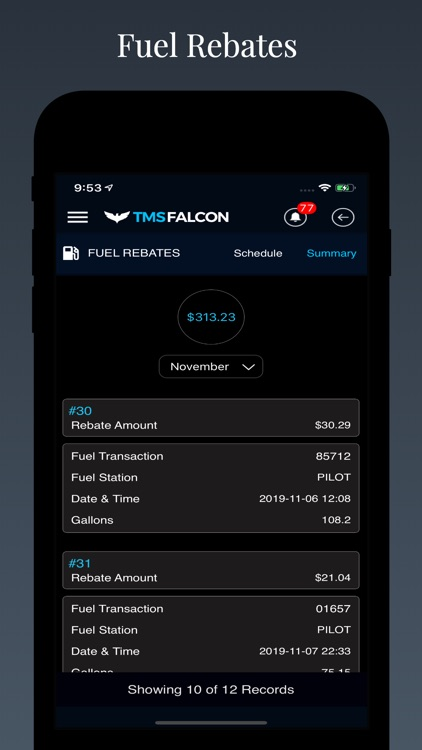 Tmsfalcon screenshot-2