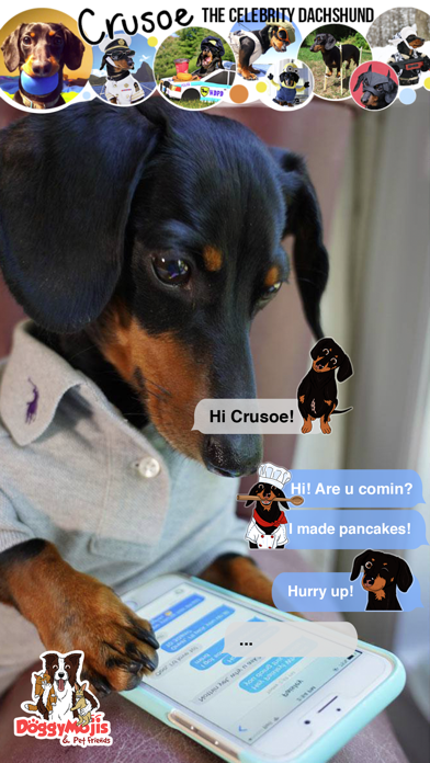 CrusoeMoji - Dachshund stickerのおすすめ画像1