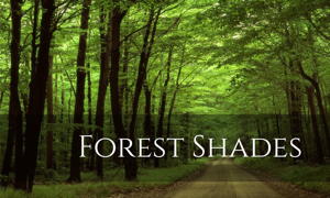 Forest Shades - Entertainment app