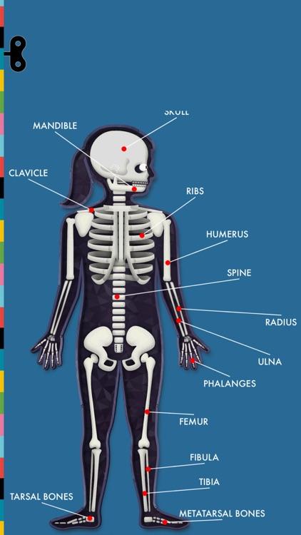 The Human Body by Tinybop screenshot-8