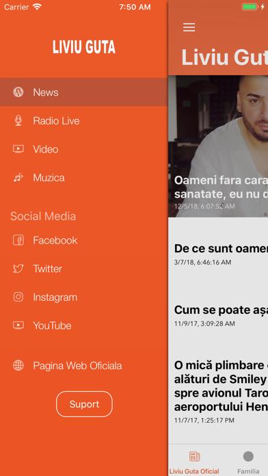Liviu Guta screenshot three