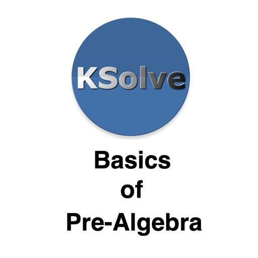 Basics Of Pre-Algebra