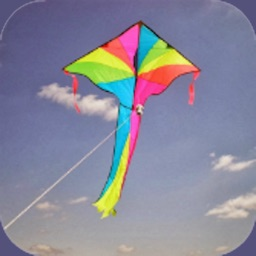 How to fly Kite