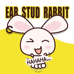 ear stud rabbit