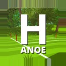 Activities of Hanoe - Ball game
