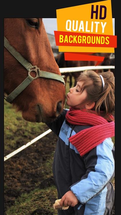 Beautiful HD Horse Wallpapers screenshot-4
