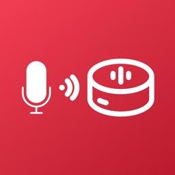 Skill Setup & Voice Command