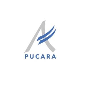 Pucara_MLP
