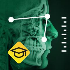 OrthoLine: Learning