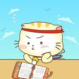 Cute Little Fat Cat