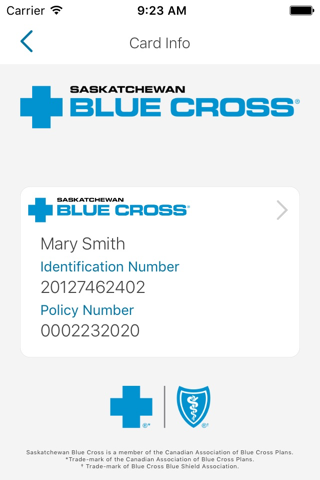 Group Member - SK Blue Cross - náhled
