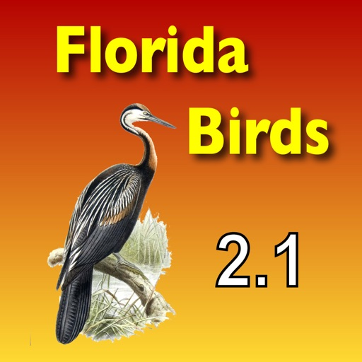 Birds of South Florida