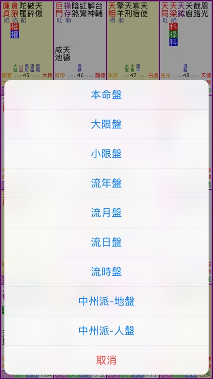 紫微斗數排盤 screenshot-4