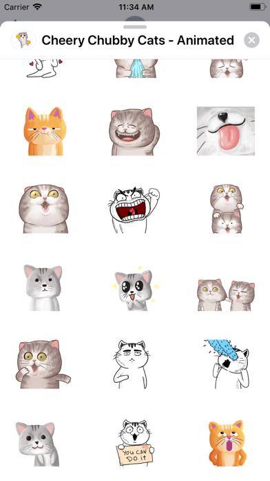 Cheery Chubby Cats - Animated screenshot 4