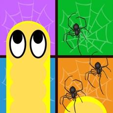 Activities of Carrier Snake - Spider Nest