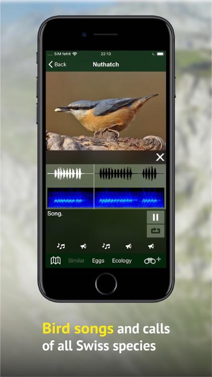 Birds of CH -Photo Guide screenshot-3