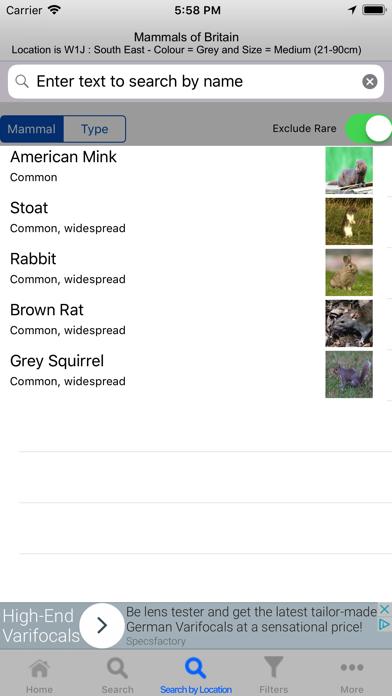 Mammals Of Britain screenshot two