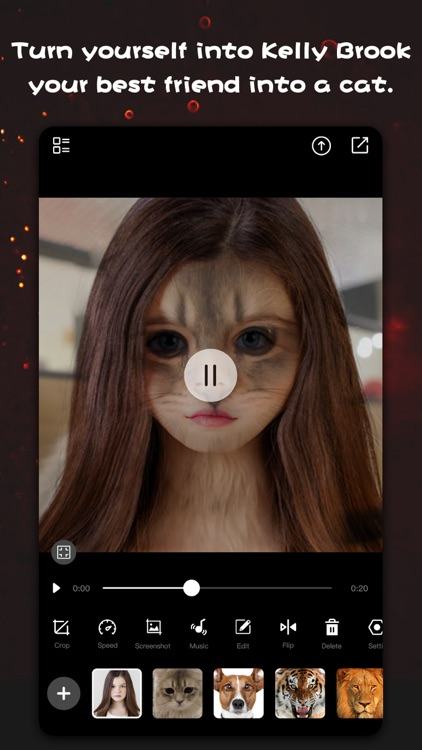 Face Morph Video Editor