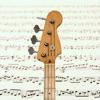 Bass Guitar Notes PRO app description and overview