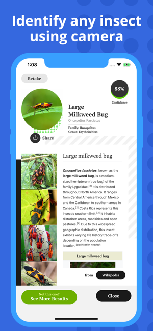 ‎Insect Identification Screenshot