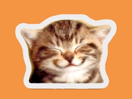 Cutest Happy Cat Stickers