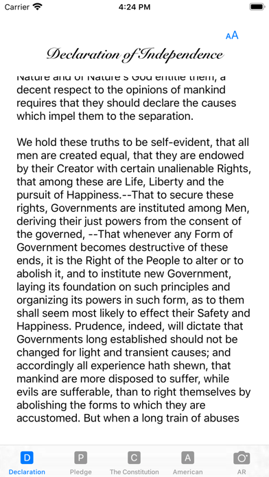 our Constitution screenshot 4