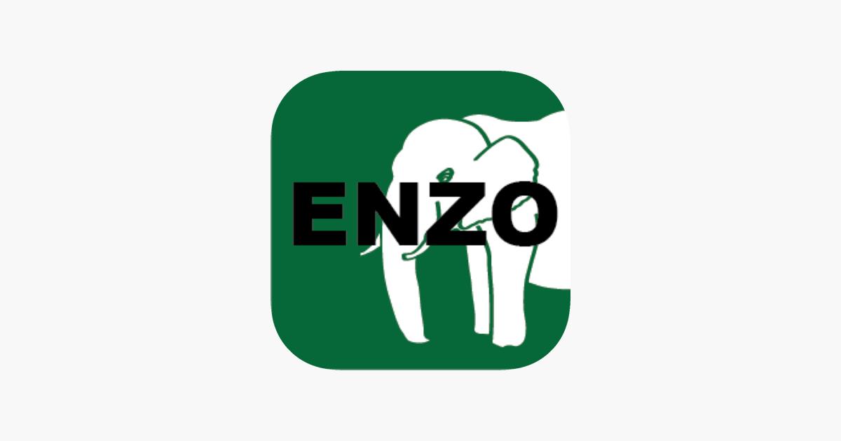 給料 ファクタリング enzo