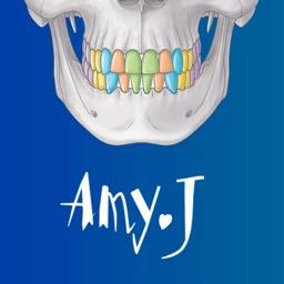 Human Anatomy -Anatomical term