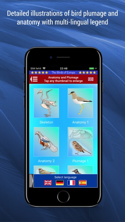 Birds of Europe screenshot-8