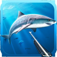 Codes for Hunter underwater spearfishing Hack
