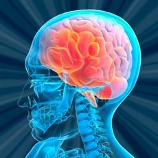 Activities of Brain Games: Moron or Smart?