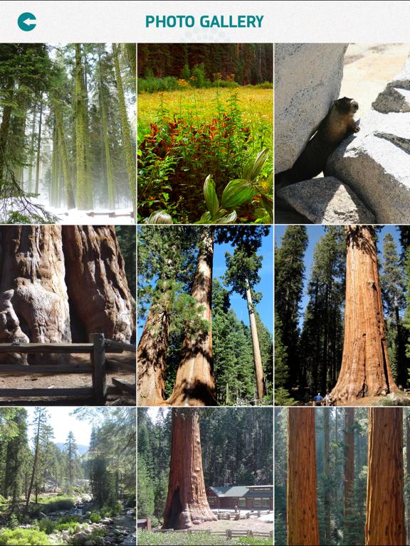 Sequoia National Park screenshot 9