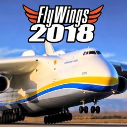 FlyWings 2018 Flight Simulator