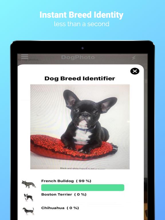 DogPhoto - Dog Breed Scanner screenshot 8