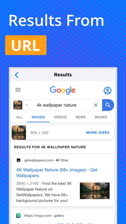Reverse Image Search - OCR screenshot-3
