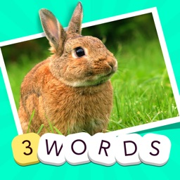 3 Words - find the three secret quiz words in one picture