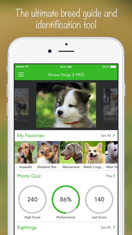 iKnow Dogs 2 PRO screenshot-0