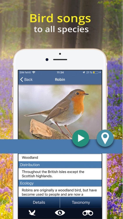 Bird Id - British Isles birds screenshot-4