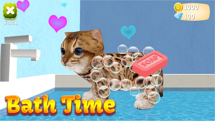Cat Simulator:  Kittens 2019 screenshot-3