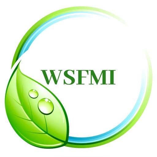 WSFMI
