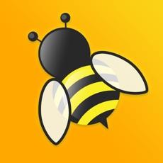 Activities of Idle Bee
