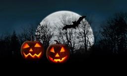 Haunted Halloween for TV